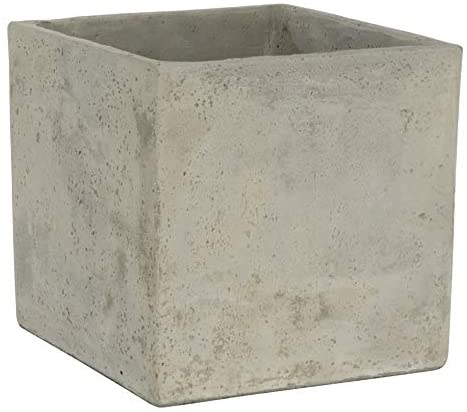 Classic Home and Garden 3/0935/1 ConSq Natural Cement Square Planter 8 inch, 8″