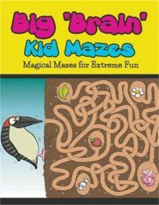 Big Brain Kid Mazes: Magical Mazes for Extreme Fun (Paperback or Softback)