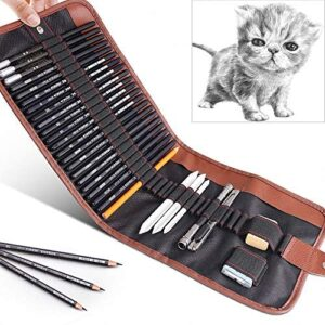 29 Pieces Drawing Pencils Set for Students,GOLP Perfect for Beginners Sketch Wooden Pencils Kit,Sketching School Supplies,Art Pencils,Drawing Pen,Graphite Charcoal Pencil,Erasers and Paper Pens